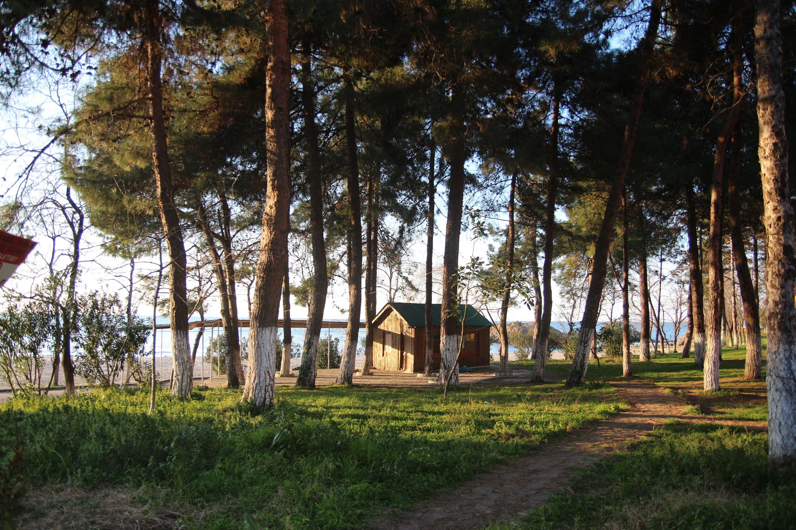 Tirebolu Gezilecek Yerler | Tirebolu Balıkçı Evleri