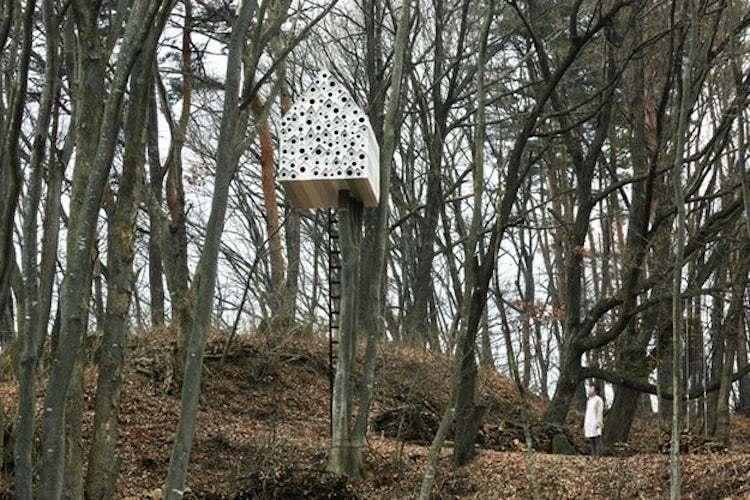 Dünyanın En Güzel Evleri | Nendo Kuş Apartmanı 2