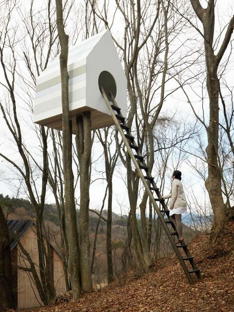Dünyanın En Güzel Evleri | Nendo Kuş Apartmanı