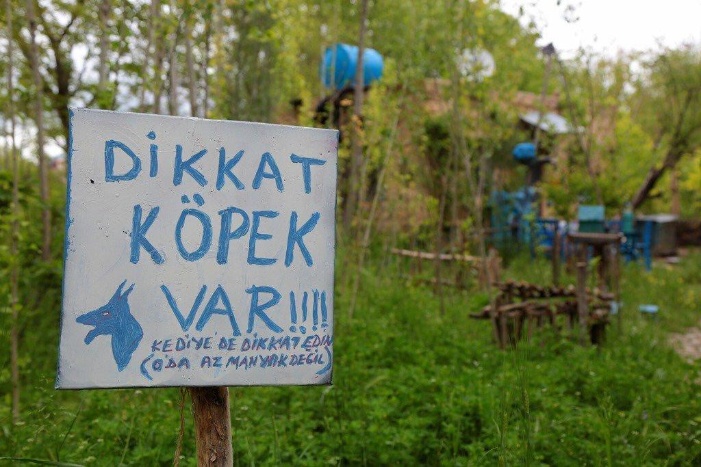 Yabanda Bir Türk | Dikkat Kedi Var