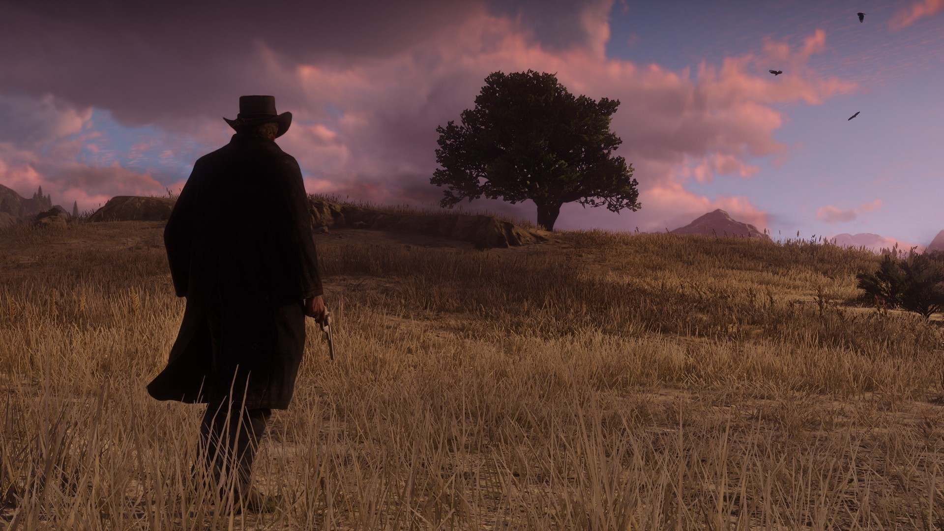 Red Dead Redemption 2 İncelemesi | Red Dead Redemption 2 Silah
