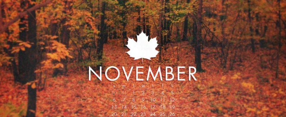 Kasım Ayı İndirimi